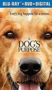 A Dog s Purpose (2017) หมาเป้าหมาย และเด็กชายของผม